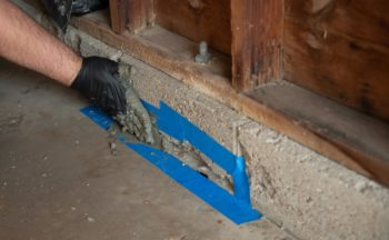 Prevent mice with entry point seal-up